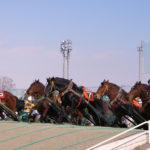 北海道遺産「ばんえい競馬」、堅調な売り上げを支えるアイディア