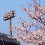 楽しみにしていた野球観戦が雨天中止! その時かかるコストの規模は?