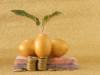 """金融・投資商品に求める基準、それはやはり """"安全性""""が最上位なのか!?"""