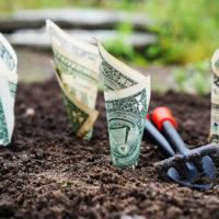 ドル一人勝ちの中でのドル資産保有考察!