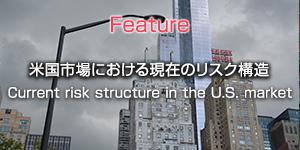 米国市場における現在のリスク構造